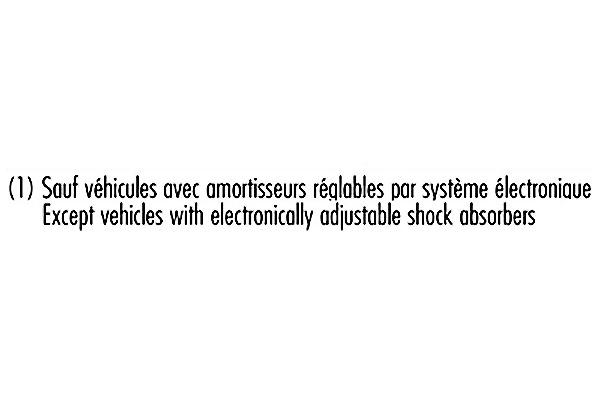 Jeu de 2 amortisseurs RECORD-FRANCE 103595